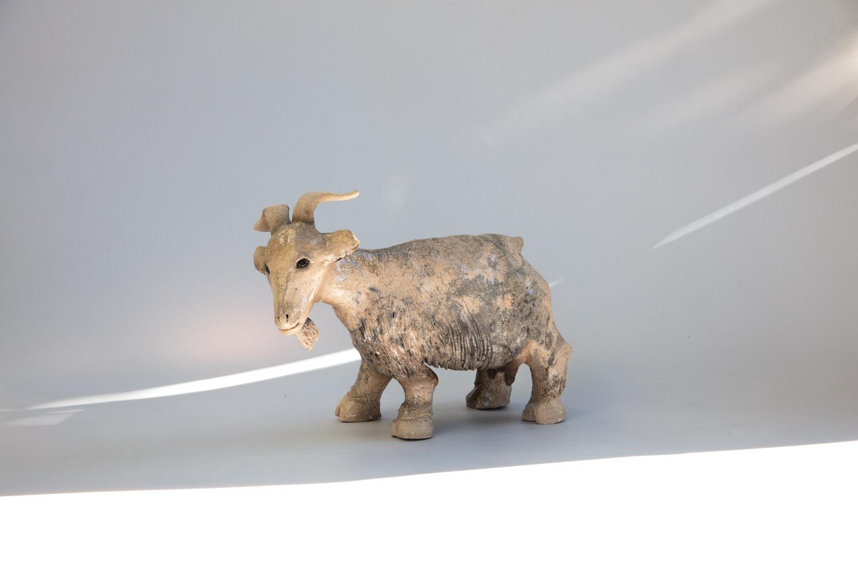 La chèvre rose raku
